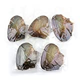 5Packs Individually Bulk Wrapped Akoya Oysters with Large Pearls 6-9 mm (Four Color Random Ship) Round (8mm-9mm 10pcs)