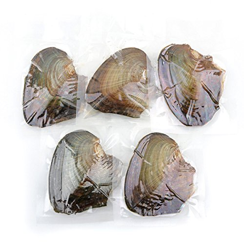 5Packs Individually Bulk Wrapped Akoya Oysters with Large Pearls 6-9 mm (Four Color Random Ship) Round (7mm-8mm 15pcs) by unbrand