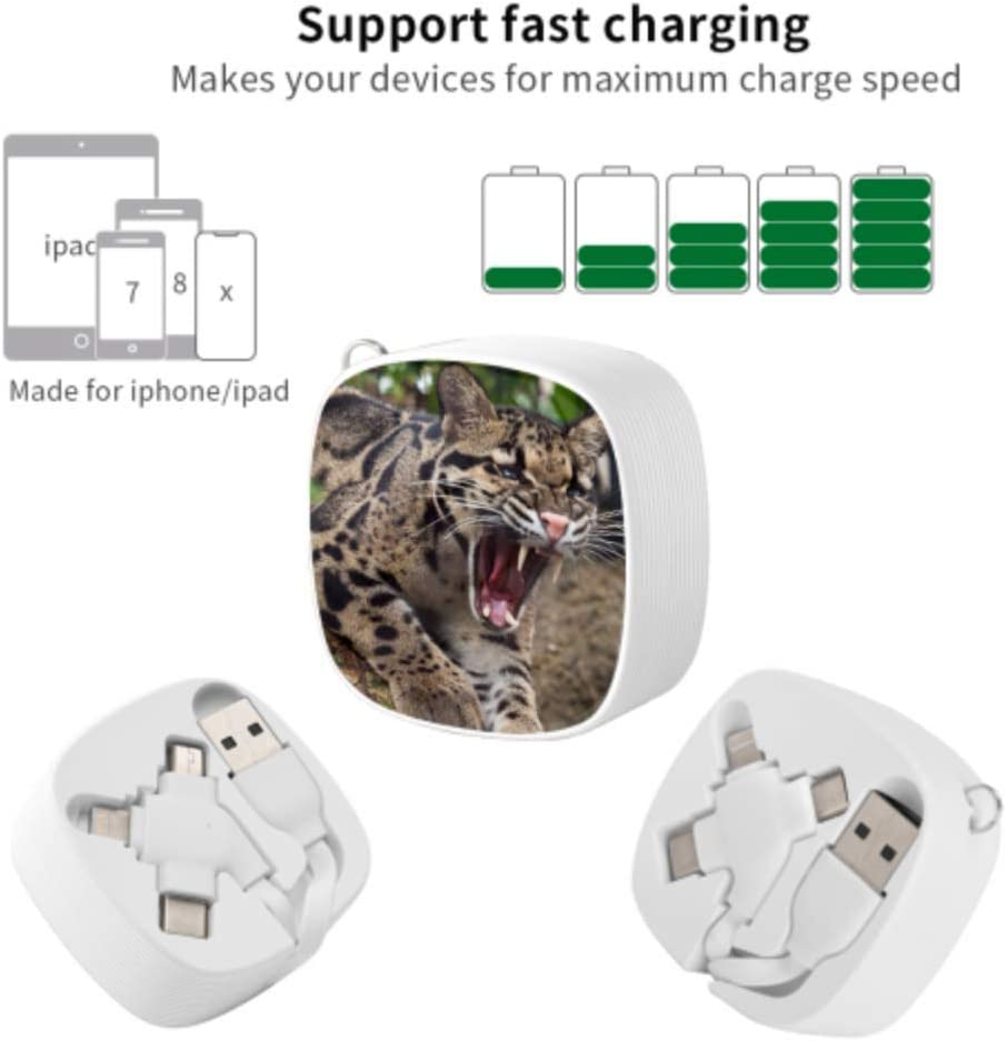 Charging Cable Multi Beautiful Leopard Multi 3 in 1 Retractable Multi Charging Cable with Micro USB//Type C Compatible with Cell Phones Tablets and More