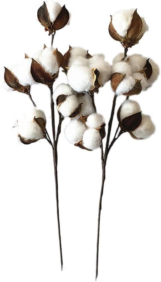 Vosarea 4 unids Tallos de algodón 6 algodón Boll Secado Rama de árbol de algodón Flores Artificiales decoración de la Boda en casa: Amazon.es: Hogar