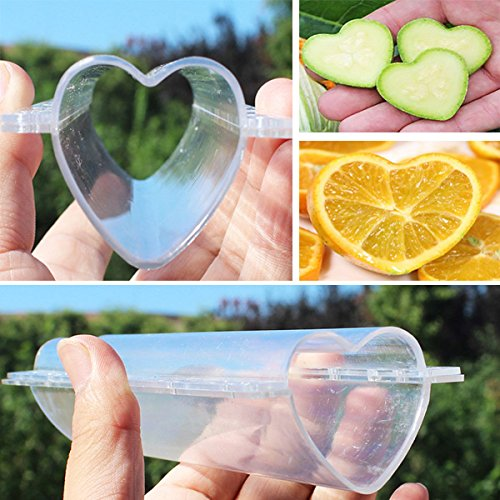 (Heart-shaped Cucumber Shaping Mold Garden Vegetable Growth Forming Mould)
