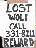 Lost: Lost and Found Pet Posters from Around the