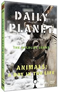 Daily Planet in the Classroom Wildlife: Animals: A Day in the Life