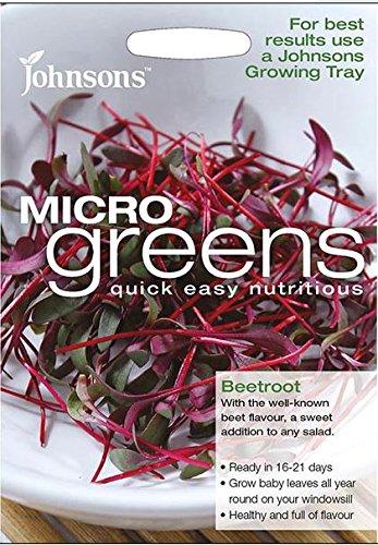 Johnsons - Salad - Microgreen Beetroot (Bulls Blood) - 800 Seeds Thompson and Morgan