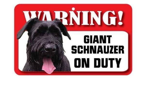 Tarjeta laminada de perro Schnauzer gigante: Amazon.es: Hogar