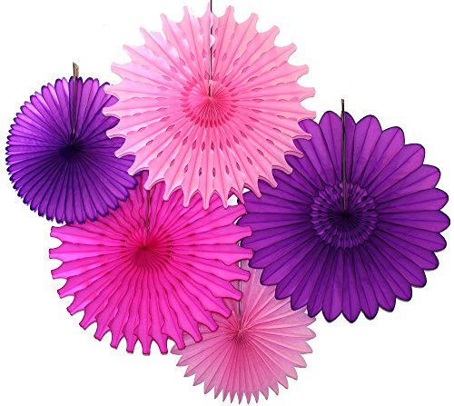 5-Piece Tissue Paper Fans, Purple Pink Party -
