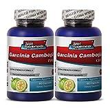 Fat burner energy booster - GARCINIA CAMBOGIA EXTRACT 1300 Extra Strength Formula - Garcinia abundant health - 2 Bottles 120 Capsules