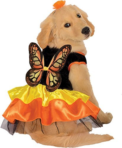 UHC Monarch Butterfly Outfit Fancy Dress Puppy Halloween Pet Dog Costume, S ()