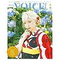 VOICE Channel