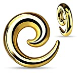 BodyJ4You Goldtone Curved Spiral Tapers Stainless Steel 12mm, 1/2'' Inch - Pair