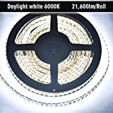 Dual Row Flexible LED Strip Lights, CRI 92 DC24V