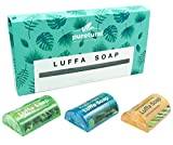 #1: Puretural Luffa Soap Gift Box Set of 3 x 100 Grams Includes 1x Menthol, 1x Green Tea, 1x Lemongrass Loofah Soap Bar with Honey Aromatherapy to clean dark spots body scrub for Stretch marks Whitening