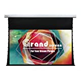 Grand Screen Mortar Mount Tab-Tension Motorized Projector Screen with PVC (100'' Diagonal (16:9))