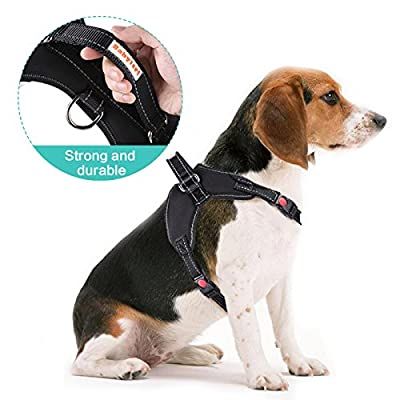 Babyltrl No Pull Dog Harness for Medium Large Breed Dogs, Adjustable, Easy to Wear, Reflective Design, Sturdy Handy Handle, Oxford Soft Vest for Outdoor Walking(M, Black)