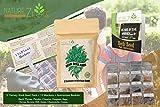 NatureZ Edge Heirloom Herb Seeds Variety Pack, 12