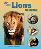 Lions up Close, Carmen Bredeson, 0766030806