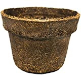 Vaso de fibra de coco N xba 05 12cm diam. X 9,00cm COQUIM
