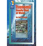 img - for Tsunami!: Deadly Wall of Water (High Five Reading) book / textbook / text book