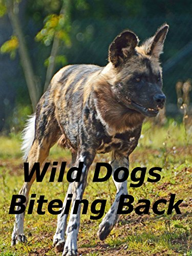 (Wild Dogs Biteing Back)