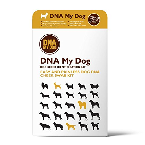Dna My Dog Canine