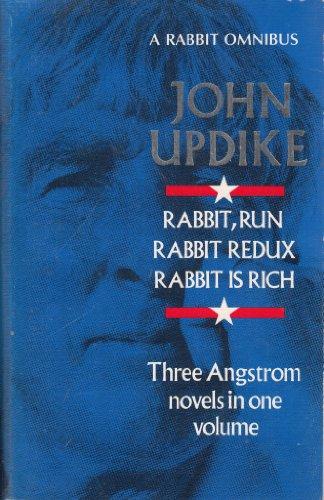 Rabbit Run Epub