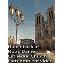 Hunchback of Notre Dame Cathedral Church Paris Ambient Video