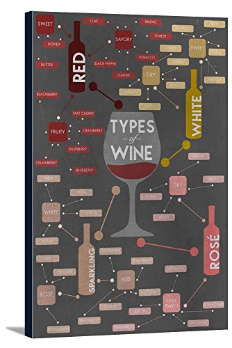 Types of Wine Infographic Gallery Wrapped Stretched Canvas