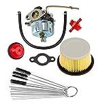 8hp tecumseh air cleaner - HIFROM Replace Carburetor Carb kit Fuel Filter Primer Bulb Cleaner Tool for Tecumseh 631921 631070 631070A 631074 H25 H30 H35 H40 Air Filter 30727 30604 John Deer AM30900