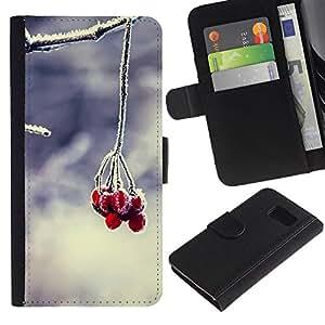 Billetera de Cuero Caso Titular de la tarjeta Carcasa Funda para Samsung Galaxy S6 SM-G920 / Fruit Macro Forsted Berries / STRONG