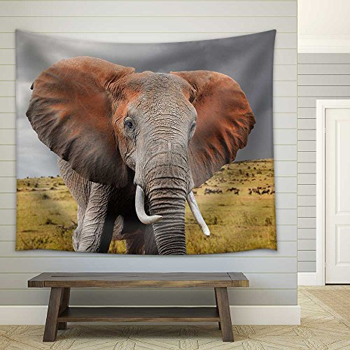 Elephant in National Park of Kenya Africa Fabric Wall