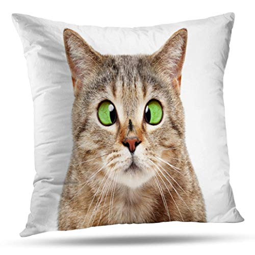 Suesoso Decorative Pillows Case 16 x 16 Inch Cross Eyed Pretty Kitty Throw Pillowcover Cushion Decorative Home Decor Garden Sofa Bed Car