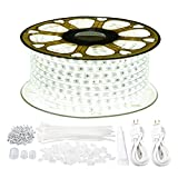 GuoTonG 131.2ft/40m LED Strip Rope Lights,Waterproof, 6000K Daylight White,110V 2 Wire, Flexible, 2400 Units SMD 2835 LEDs,Indoor/Outdoor Use, Ideal for Backyards, Decorative Lighting