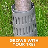 Dimex EasyFlex Plastic Tree Trunk Protectors, 6