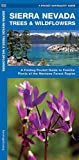 Sierra Nevada Trees & Wildflowers: A Folding Pocket Guide to Familiar Species of the Montane Forest Region (A Pocket Naturalist Guide)