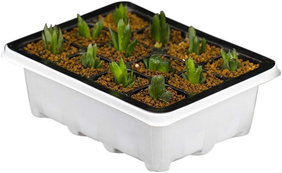 Comtervi Plateau de semis Pots de Semis 12 Trous Cellules de Semis Plateau de D/émarrage de la Plante Fleur Plateau Bac de Plantation Conteneur