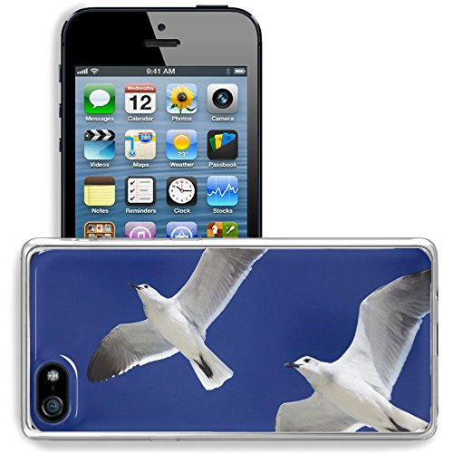 Liili Apple Iphone 5 Iphone 5S Iphone Se Clear Case Soft Tpu Rubber Silicone Bumper Snap Cases Iphone5 5S Image Id  34562484 Great Black Backed Gull Larus Marinus Flies In The Sky