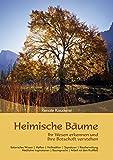 Heimische Bäume: Ihr Wesen erkennen und ihre Botschaft verstehen