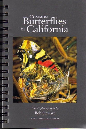 Common Butterflies of California