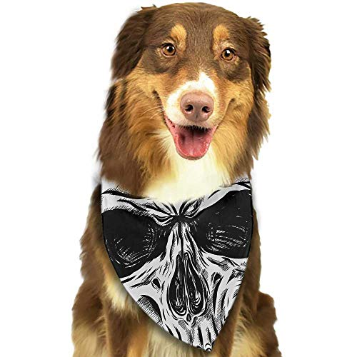 Cute pet Scarf Halloween Gothic Dead Skull Face Close Up Sketch Evil Anatomy Skeleton Artsy Illustration W27.5 xL12 Scarf for Small and Medium Dogs and -