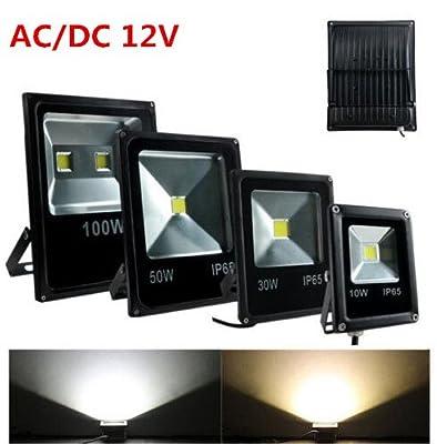 Warm White, 10W : Outdoor Lighting 10W 20W 30W 50W Led Floodlight Spotlight RGB Spot Flood Light Lamp Reflector Refletor Foco Exterior Projecteur