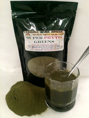 Phyto Green - Green Superfood Drink Powder - Compare to Kyo Green - 16 (Kyo Green Powder)