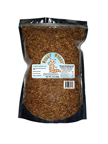 Wormyworms 13oz Dried Freshwater Amphipods Gammarus For Reptiles, Amphibians, Fish, Turtles, Newts, - Gammarus Shrimp