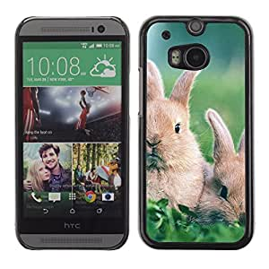 Graphic4You Cute Rabbit Bunny Animal Design Hard Case Cover for HTC One (M8)