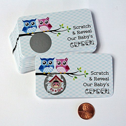 Whimsical Owl Gender Reveal Scratch off Cards, Reveal The Sex of your Baby,