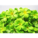 100-Green-Hawaiian-Plumeria-Frangipani-Silk-Flower-Heads-3-Artificial-Flowers-Head-Fabric-Floral-Supplies-Wholesale-Lot-for-Wedding-Flowers-Accessories-Make-Bridal-Hair-Clips-Headbands-Dress
