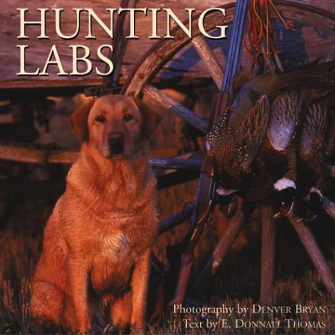 Hunting Labs: A Breed Above the Rest