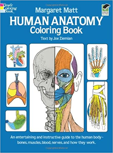 Book Human Anatomy Colouring Book