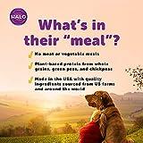 Halo Vegan Wet Dog Food - Premium and Holistic