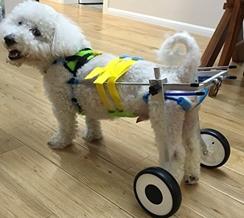Adjustable Dog Wheelchair (XXS) , Hip Height: 8''--11'', Weight 0 to 5 lbs, Hind legs Rehabilitation by Newlife Mobility