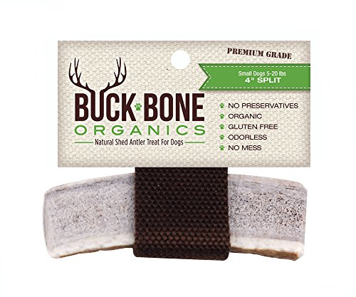 "51075hL0q5L - Buck Bone Organics Antlers Dog Elk Antler ~ Small Split Chew, 4"" - Made in USA - Long Lasting Happy Chewing"